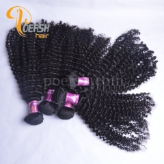 Poersh Hair 8A Unprocessed Virgin Hair Top Quality 1B Natural Black Color Curly Wave 10Pcs/Lot Human Hair Weft